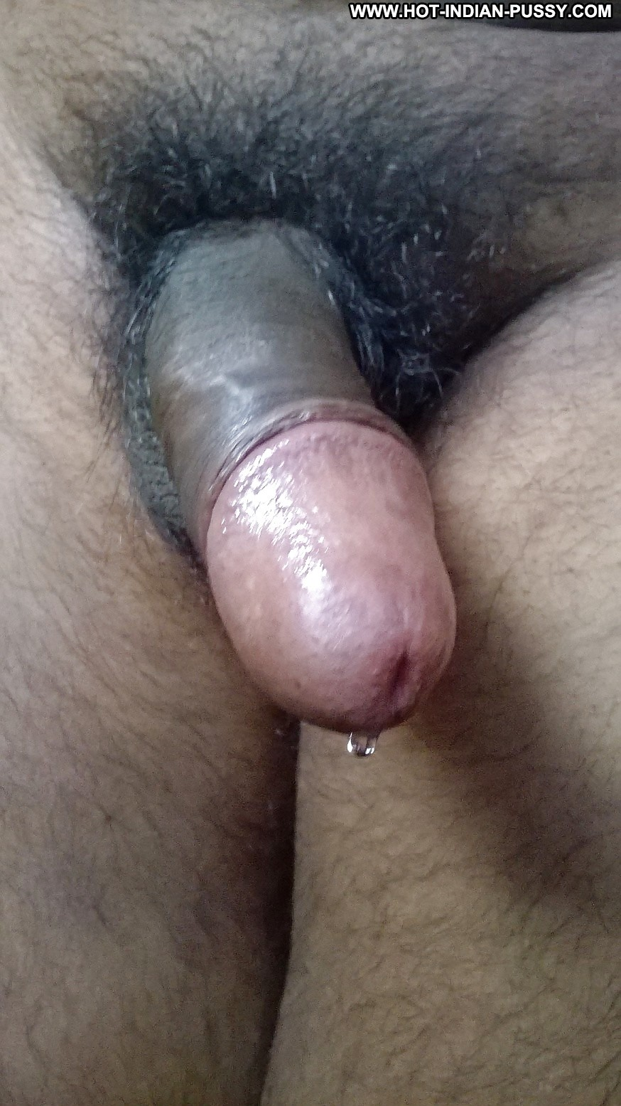 Indian cock solo